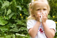 Indoors Allergy Triggers You Need to Avoid