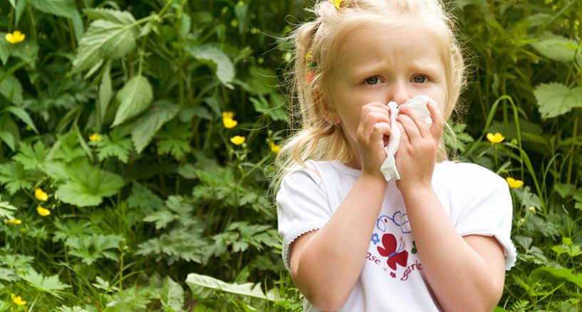 Reasons and Treatment of Spring Allergies
