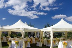 What to Know When Searching for Wedding Table Supplier